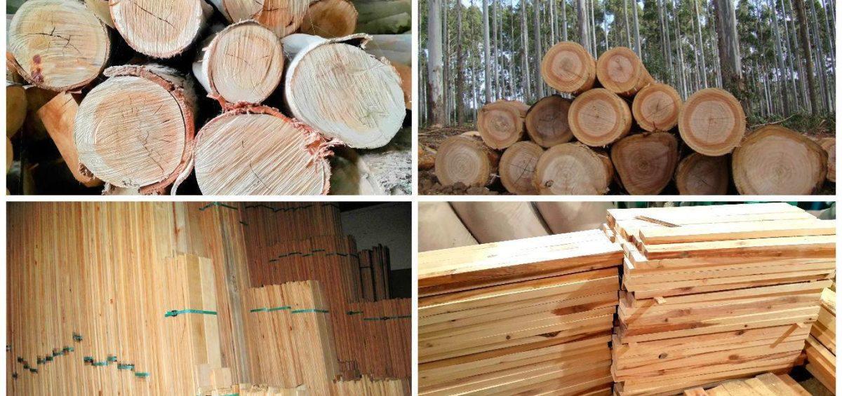 salvovonducto, transporte, madera
